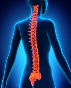 Hefferon Lawyers Personal Injury Spinal Cord and Nerve Injuries